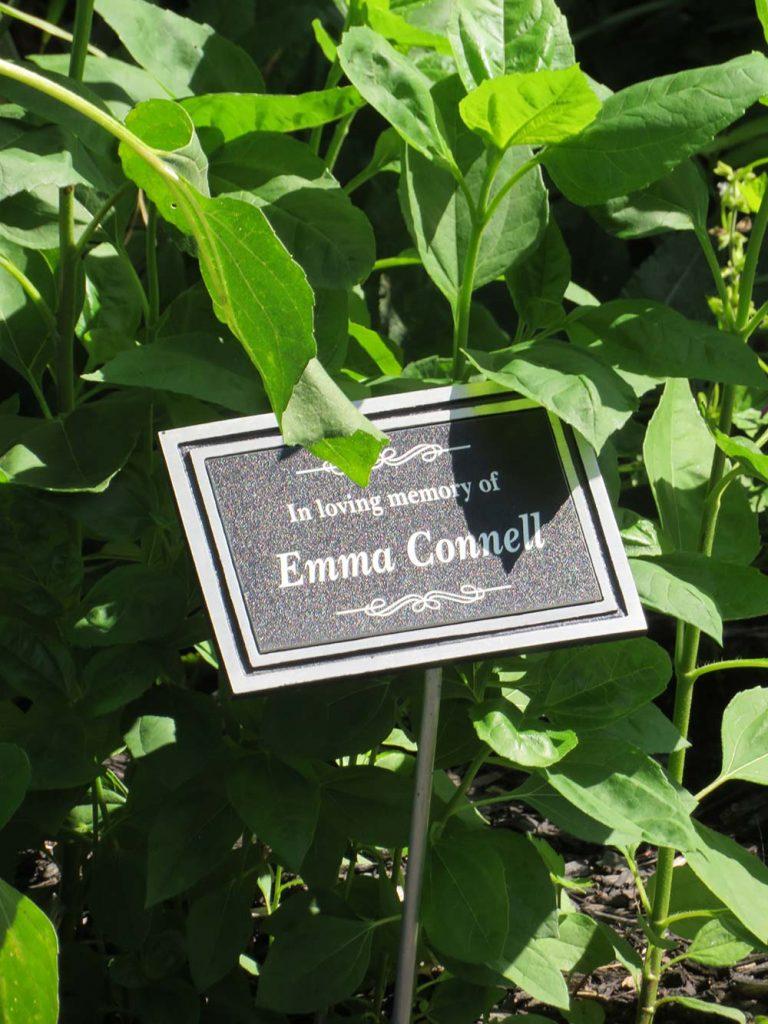 memorial plague in among plants